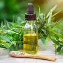 Treatment of cannabidiol (CBD) under novel foods regulations